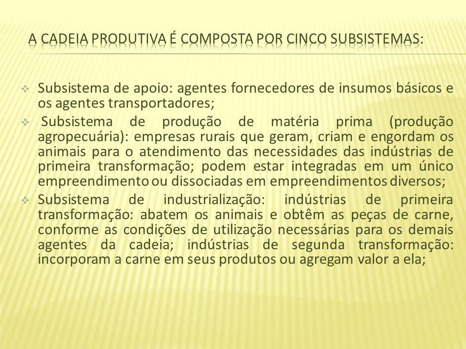 Subsistema de apoio: agentes fornecedores de insumos básicos e os agentes transportadores; Subsistema de produção de matéria prima (produção agropecuá