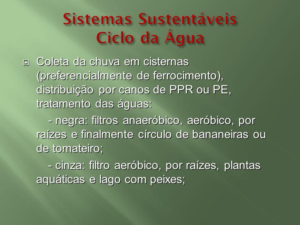 Coleta da chuva em cisternas (preferencialmente de ferrocimento), distribuição por canos de PPR ou PE, tratamento das águas: Coleta da chuva em cister