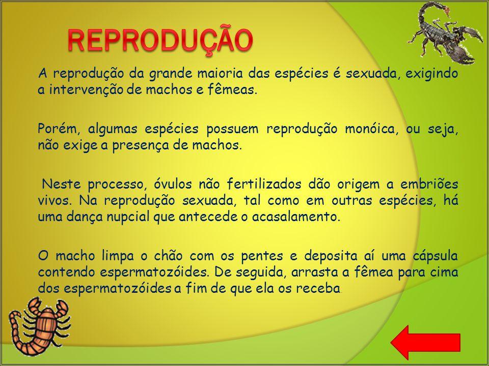 A reprodução da grande maioria das espécies é sexuada, exigindo a intervenção de machos e fêmeas.