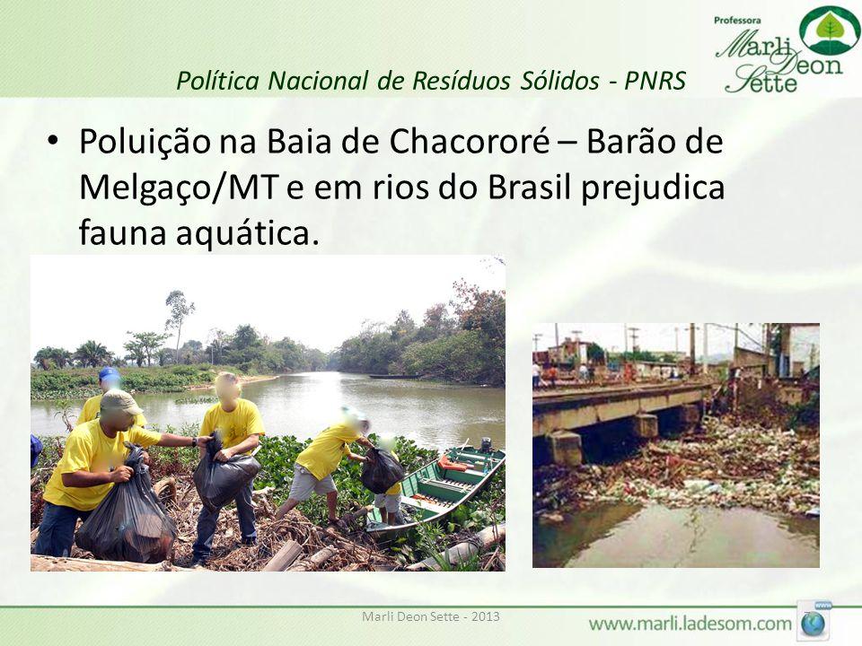 Marli Deon Sette - 20138 Política Nacional de Resíduos Sólidos - PNRS Catadores irregulares vivem de lixo depositado em céu aberto.