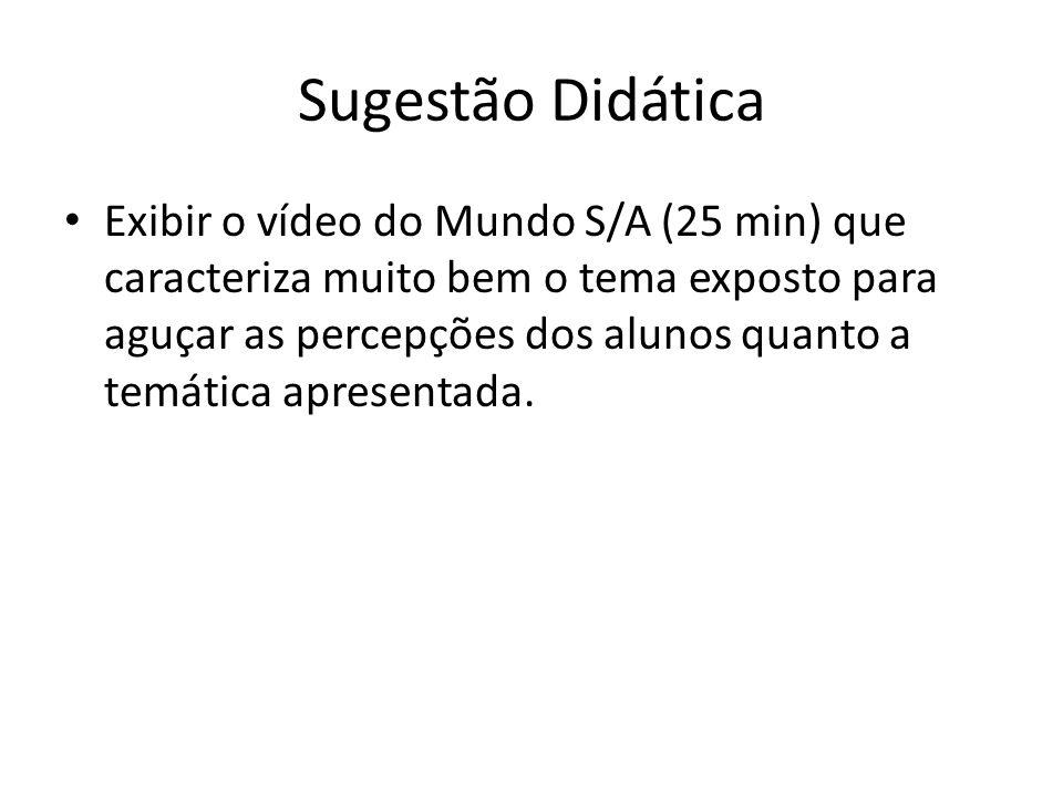 Sugestão Didática Exibir o vídeo do Mundo S/A (25 min) que caracteriza muito bem o tema exposto para aguçar as percepções dos alunos quanto a temática apresentada.