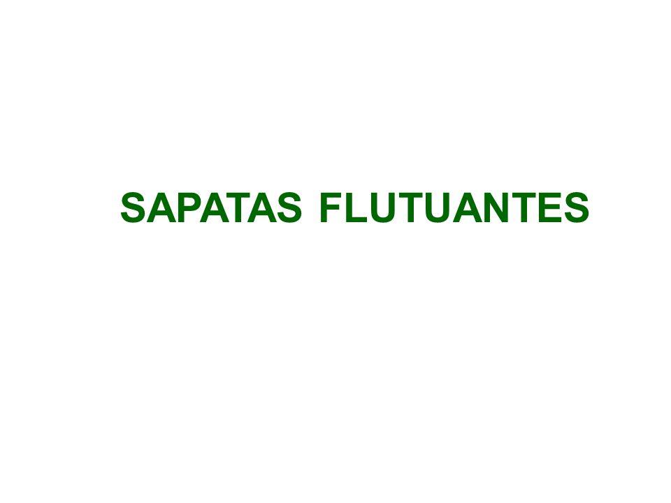 SAPATAS FLUTUANTES