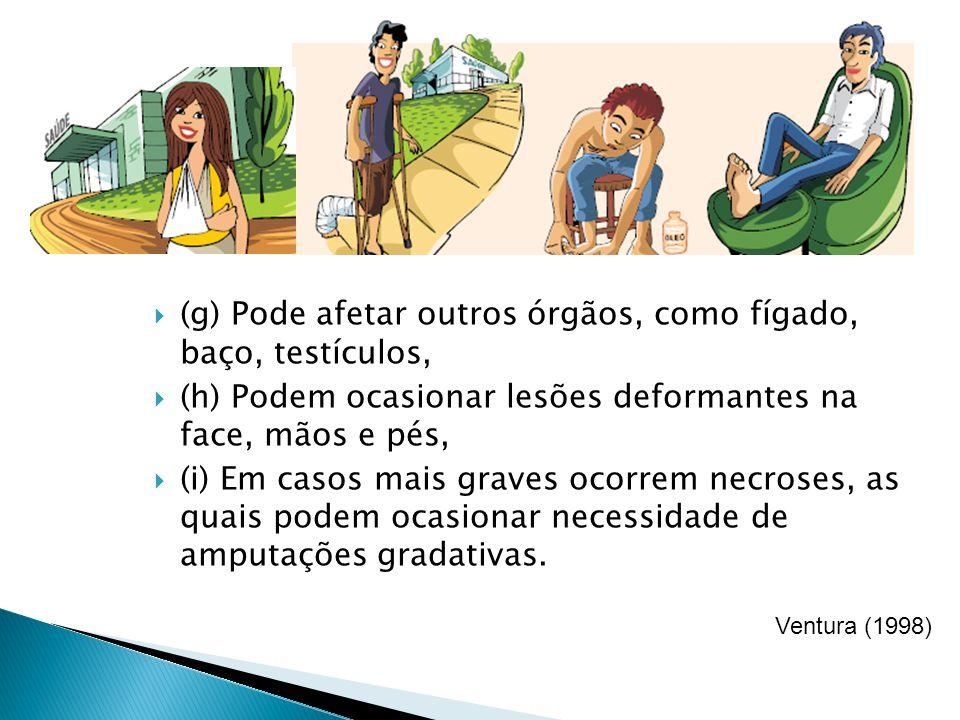 (g) Pode afetar outros órgãos, como fígado, baço, testículos, (h) Podem ocasionar lesões deformantes na face, mãos e pés, (i) Em casos mais graves oco