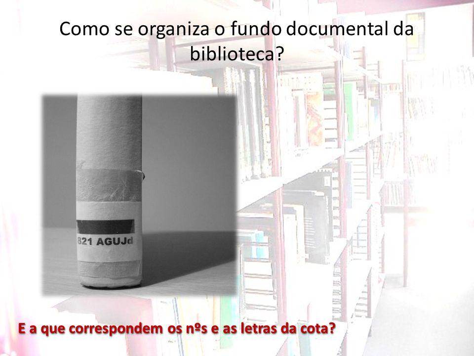 Como se organiza o fundo documental da biblioteca? E a que correspondem os nºs e as letras da cota?