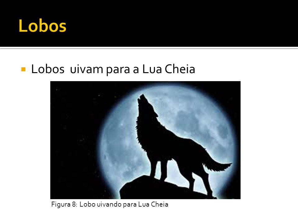 Lobos uivam para a Lua Cheia Figura 8: Lobo uivando para Lua Cheia