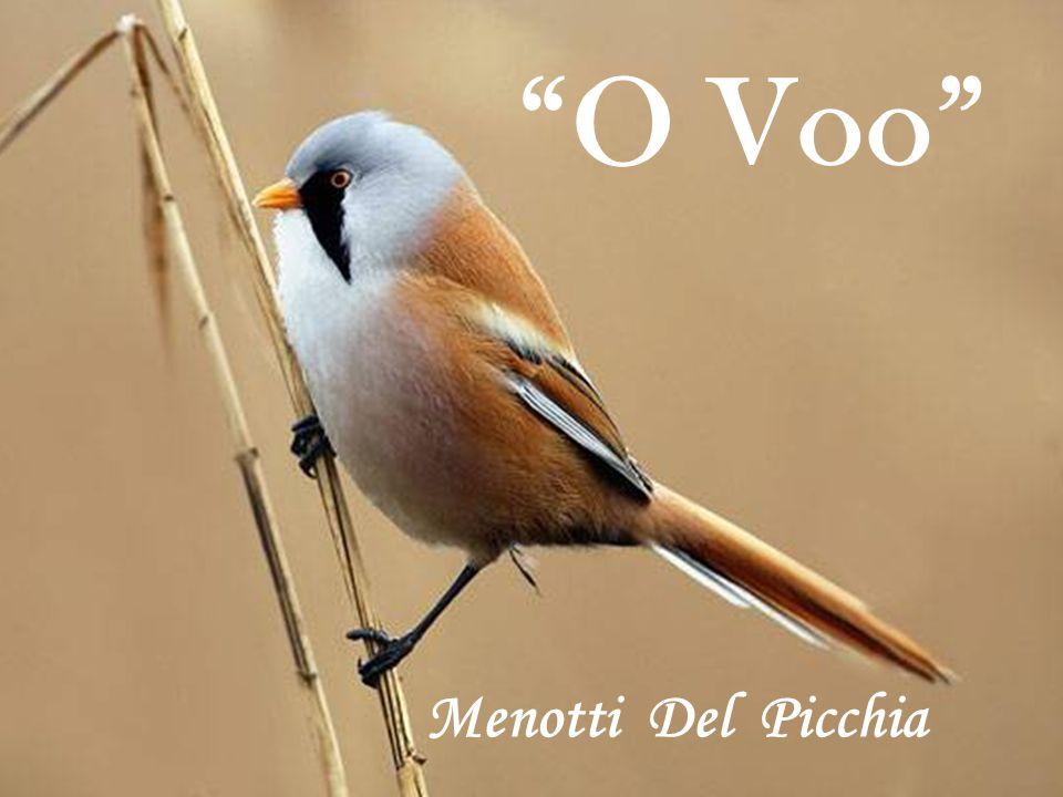 O Voo Menotti Del Picchia