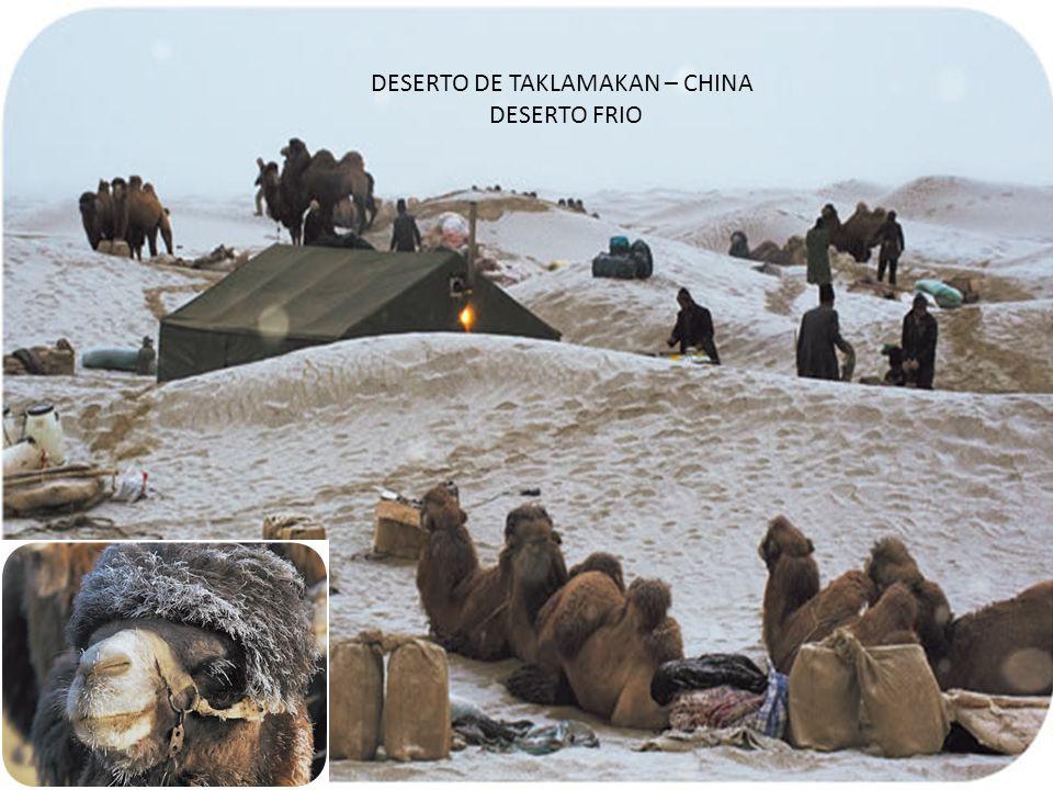 DESERTO DE TAKLAMAKAN – CHINA DESERTO FRIO