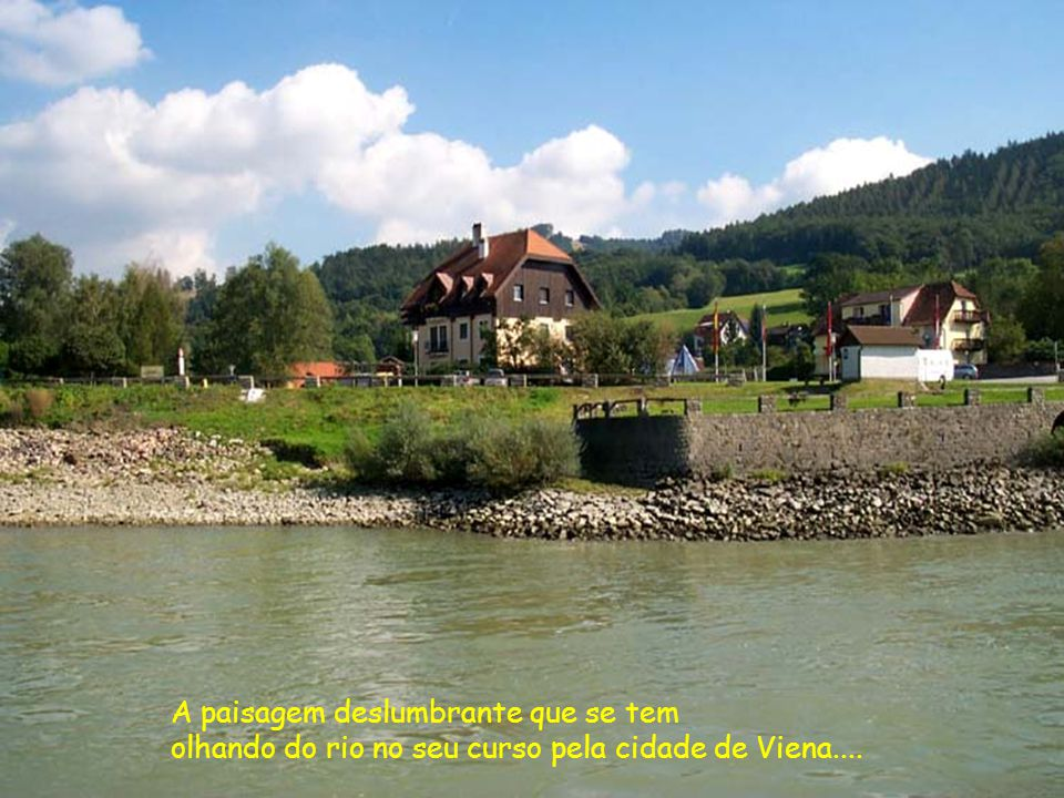 Viena do esplendor do Rio Danúbio Azul, que nasce na Alemanha, percorre 850 km passando por 7 países e deságua no Mar Negro...