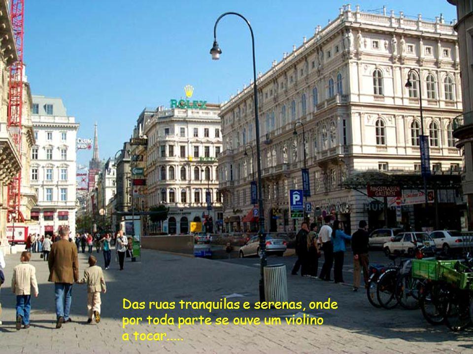 Viena da cultura, dos teatros e palácios imperiais, que encantam a cidade.......