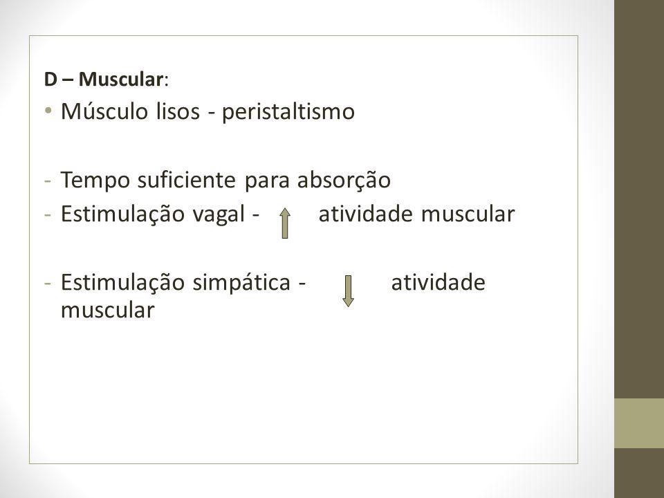 D – Muscular: Músculo lisos - peristaltismo -Tempo suficiente para absorção -Estimulação vagal - atividade muscular -Estimulação simpática - atividade muscular