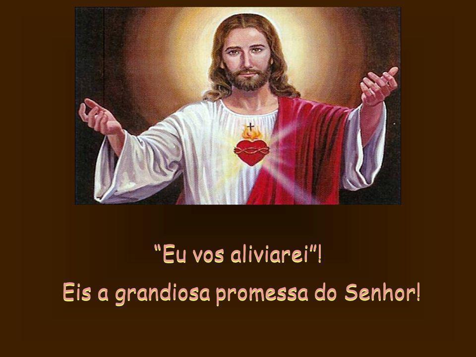 Com Sua doçura Jesus vem em nosso socorro! Se aceitamos o Seu amor, Ele cumpre a Sua promessa. Vem, e abraça todos os que se aproximarem Dele com seus