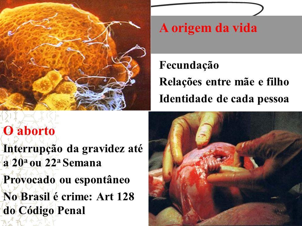 A origem da vida Fecundação Relações entre mãe e filho Identidade de cada pessoa O aborto Interrupção da gravidez até a 20 a ou 22 a Semana Provocado