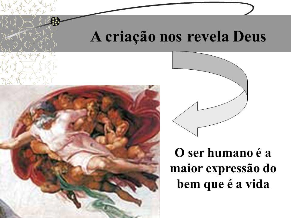 A criação nos revela Deus O ser humano é a maior expressão do bem que é a vida