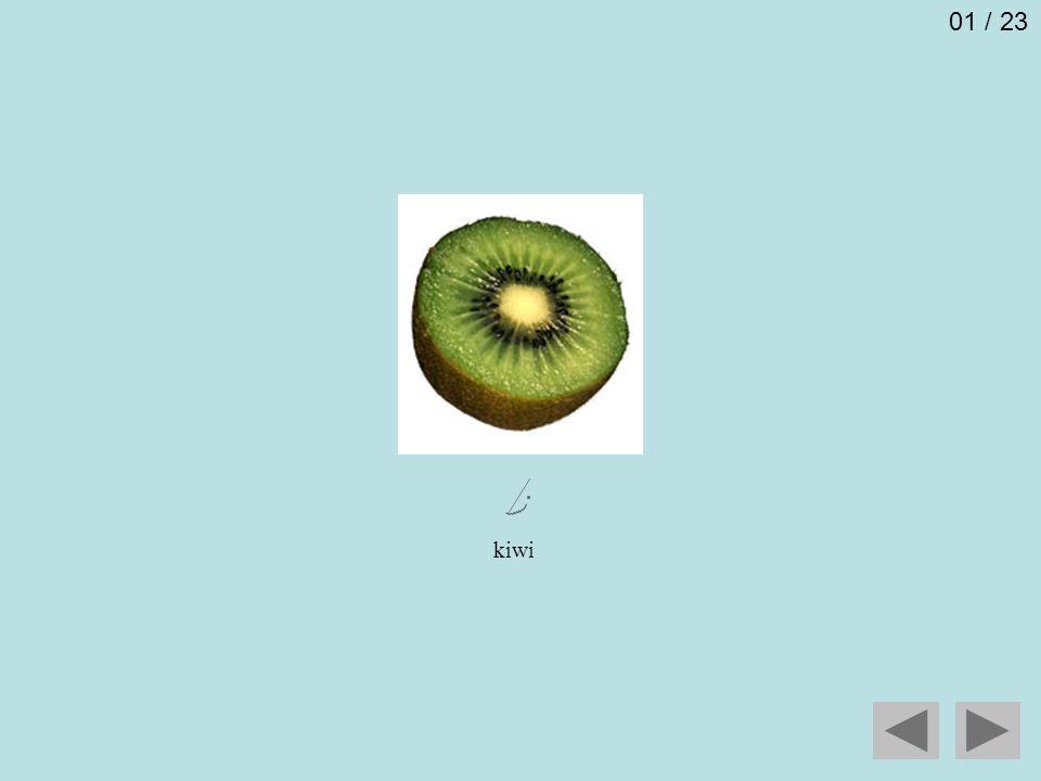 kiwi 01 / 23