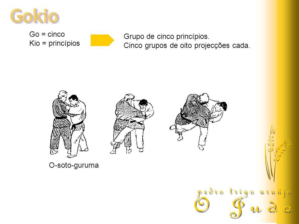 Go = cinco Kio = princípios Grupo de cinco princípios. Cinco grupos de oito projecções cada. O-soto-guruma