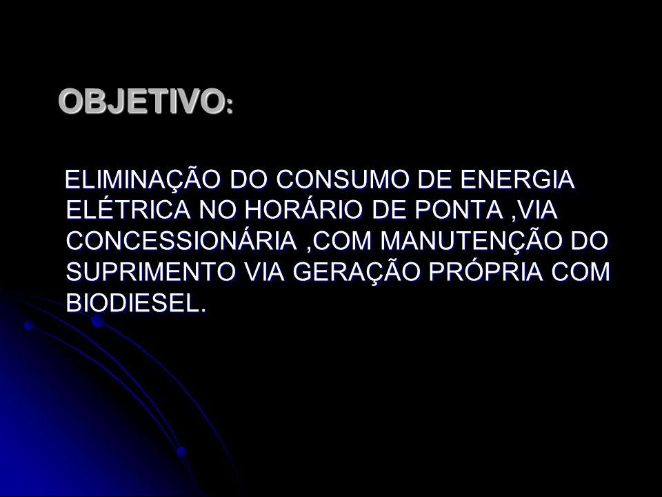 OBJETIVO : OBJETIVO : ELIMINAÇÃO DO CONSUMO DE ENERGIA ELÉTRICA NO HORÁRIO DE PONTA,VIA CONCESSIONÁRIA,COM MANUTENÇÃO DO SUPRIMENTO VIA GERAÇÃO PRÓPRIA COM BIODIESEL.