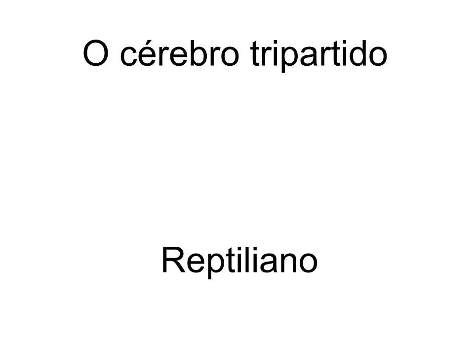 Reptiliano O cérebro tripartido