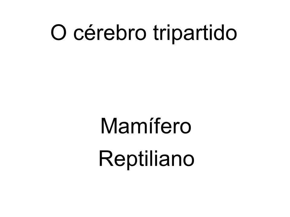 Reptiliano O cérebro tripartido Mamífero