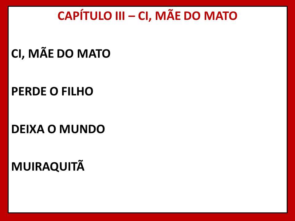 CAPÍTULO III – CI, MÃE DO MATO CI, MÃE DO MATO PERDE O FILHO DEIXA O MUNDO MUIRAQUITÃ