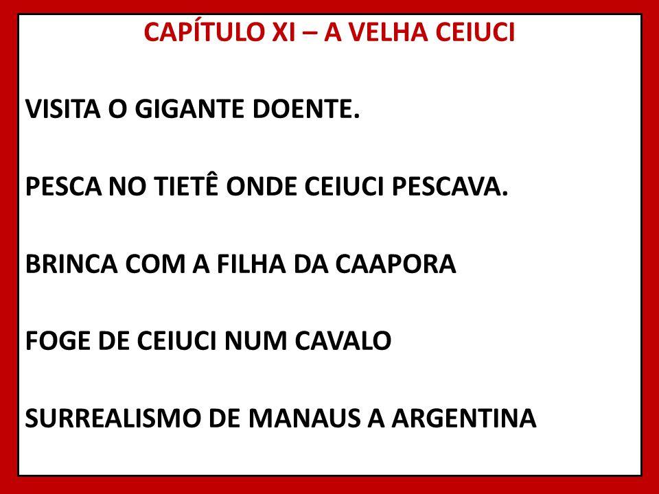 CAPÍTULO XI – A VELHA CEIUCI VISITA O GIGANTE DOENTE. PESCA NO TIETÊ ONDE CEIUCI PESCAVA. BRINCA COM A FILHA DA CAAPORA FOGE DE CEIUCI NUM CAVALO SURR