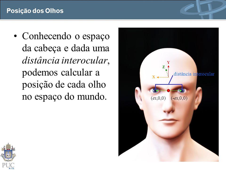 Posição dos Olhos Conhecendo o espaço da cabeça e dada uma distância interocular, podemos calcular a posição de cada olho no espaço do mundo. Z X Y (e
