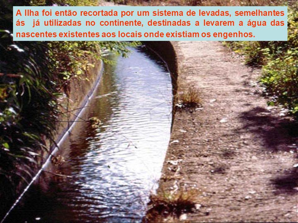 A Ilha foi então recortada por um sistema de levadas, semelhantes ás já utilizadas no continente, destinadas a levarem a água das nascentes existentes aos locais onde existiam os engenhos.
