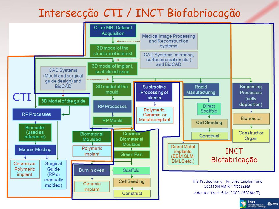 Intersecção CTI / INCT Biofabriocação The Production of tailored Implant and Scaffold via RP Processes Adapted from Silva 2005 (SBPMAT) CTI INCT Biofabricação