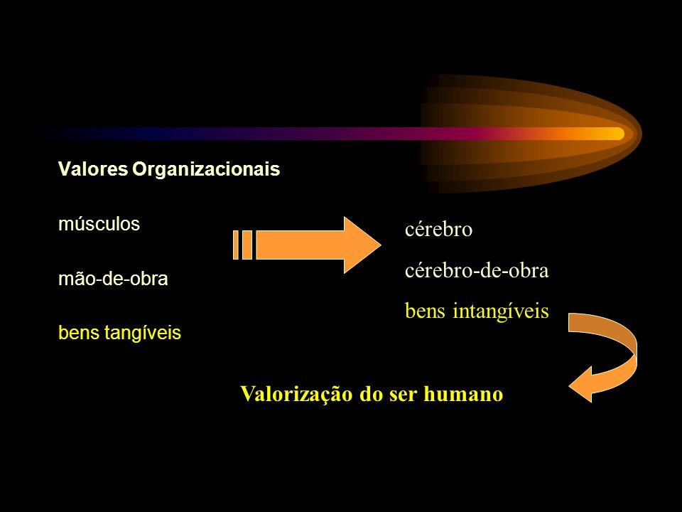 Valores Organizacionais músculos mão-de-obra bens tangíveis cérebro cérebro-de-obra bens intangíveis Valorização do ser humano