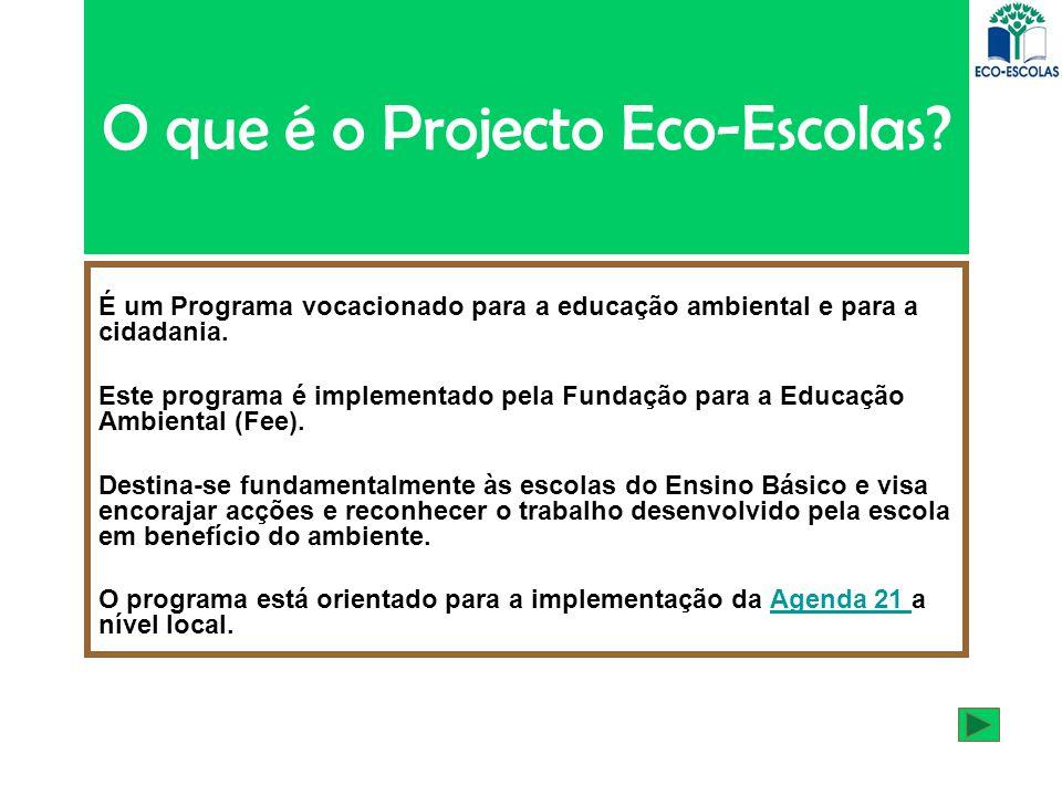 O que é o Projecto Eco-Escolas? É um Programa vocacionado para a educação ambiental e para a cidadania. Este programa é implementado pela Fundação par