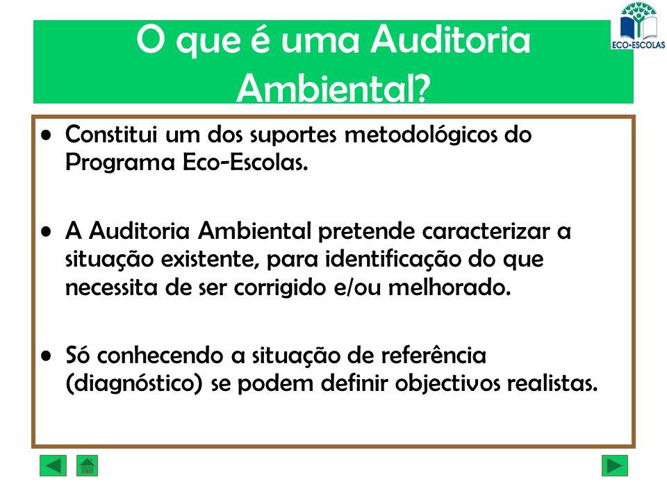 O que é uma Auditoria Ambiental? Constitui um dos suportes metodológicos do Programa Eco-Escolas. A Auditoria Ambiental pretende caracterizar a situaç