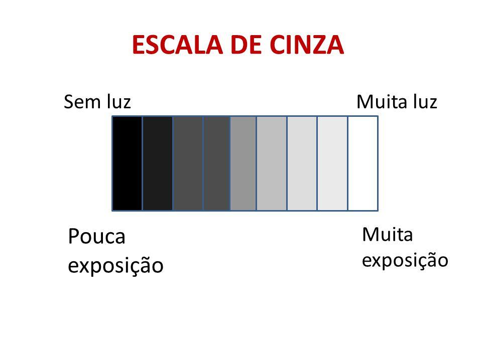 ESCALA DE CINZA Sem luzMuita luz Pouca exposição Muita exposição