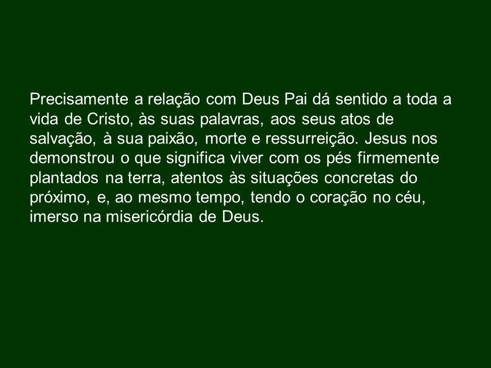 Precisamente a relação com Deus Pai dá sentido a toda a vida de Cristo, às suas palavras, aos seus atos de salvação, à sua paixão, morte e ressurreiçã