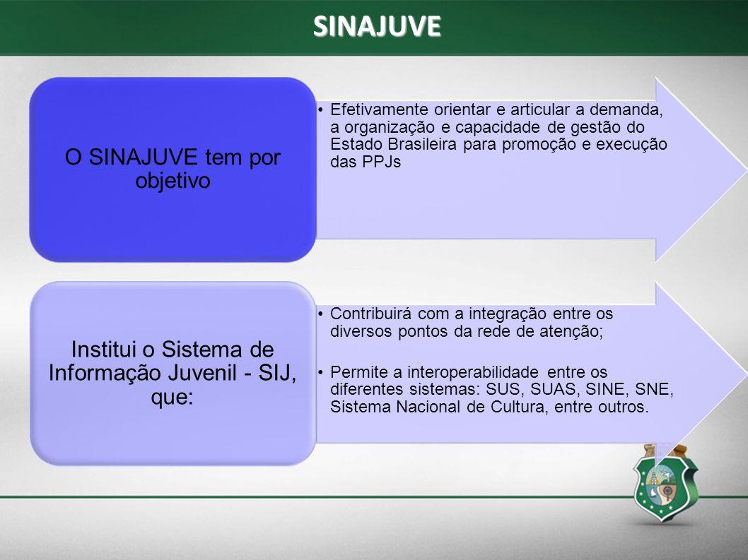 Efetivamente orientar e articular a demanda, a organização e capacidade de gestão do Estado Brasileira para promoção e execução das PPJs O SINAJUVE te