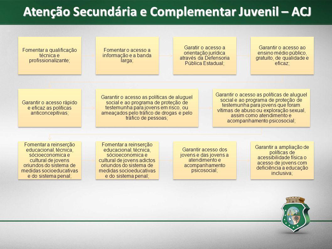Atenção Secundária e Complementar Juvenil – ACJ Fomentar a qualificação técnica e profissionalizante; Fomentar o acesso a informação e a banda larga;