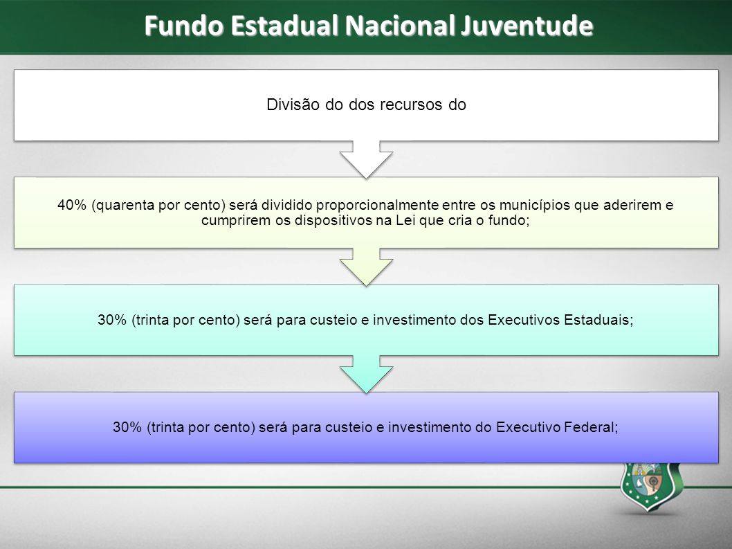 Fundo Estadual Nacional Juventude 30% (trinta por cento) será para custeio e investimento do Executivo Federal; 30% (trinta por cento) será para custe