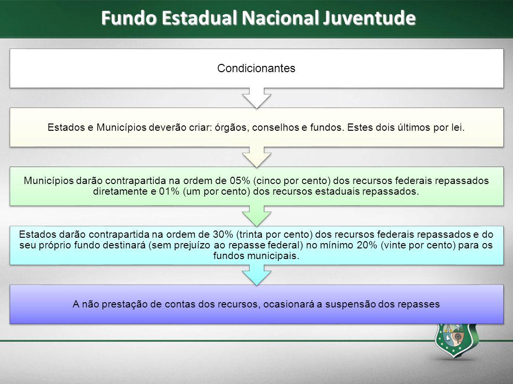 Fundo Estadual Nacional Juventude A não prestação de contas dos recursos, ocasionará a suspensão dos repasses Estados darão contrapartida na ordem de