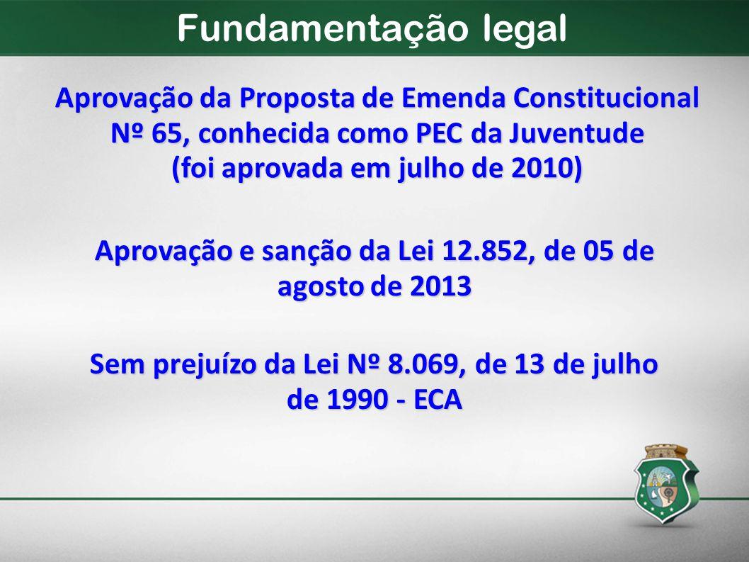 Aprovação da Proposta de Emenda Constitucional Nº 65, conhecida como PEC da Juventude (foi aprovada em julho de 2010) Aprovação e sanção da Lei 12.852