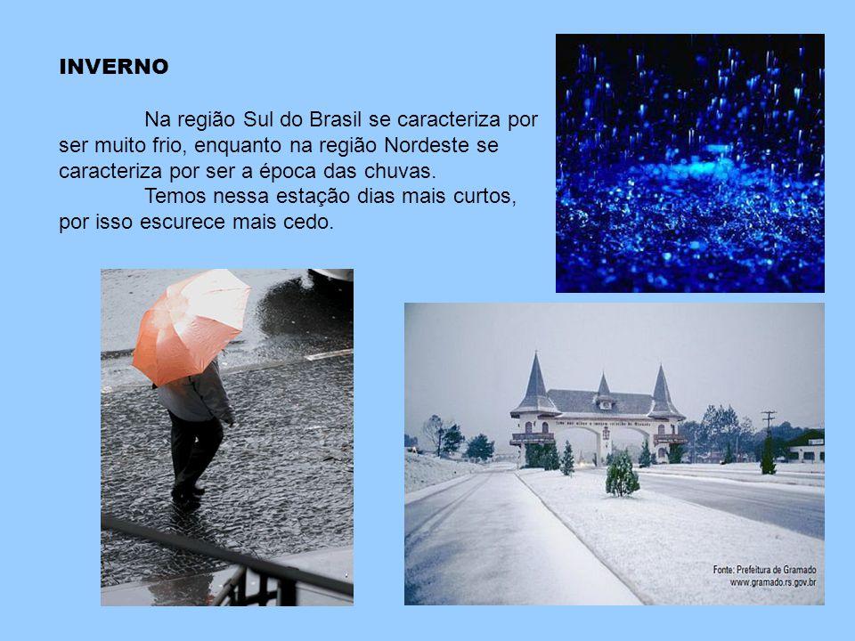 INVERNO Na região Sul do Brasil se caracteriza por ser muito frio, enquanto na região Nordeste se caracteriza por ser a época das chuvas. Temos nessa