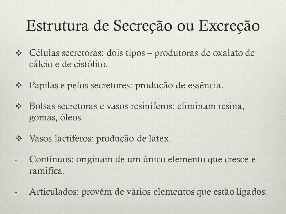 Estrutura de Secreção ou Excreção Células secretoras: dois tipos – produtoras de oxalato de cálcio e de cistólito. Papilas e pelos secretores: produçã