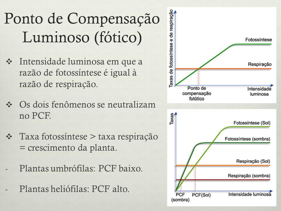 Ponto de Compensação Luminoso (fótico) Intensidade luminosa em que a razão de fotossíntese é igual à razão de respiração. Os dois fenômenos se neutral