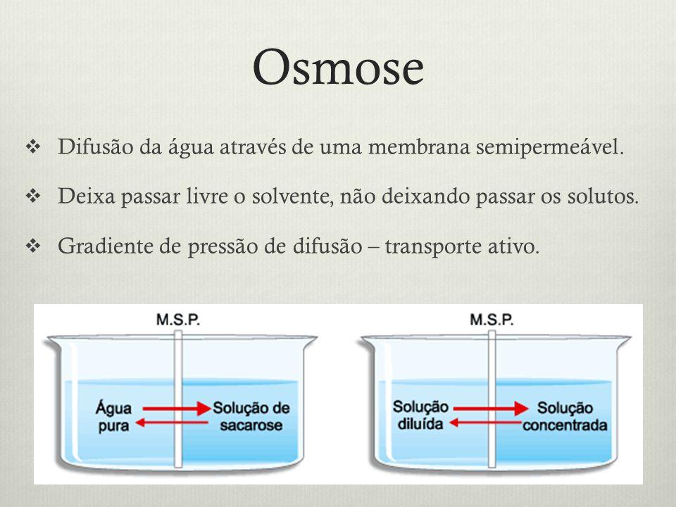 Osmose Difusão da água através de uma membrana semipermeável. Deixa passar livre o solvente, não deixando passar os solutos. Gradiente de pressão de d