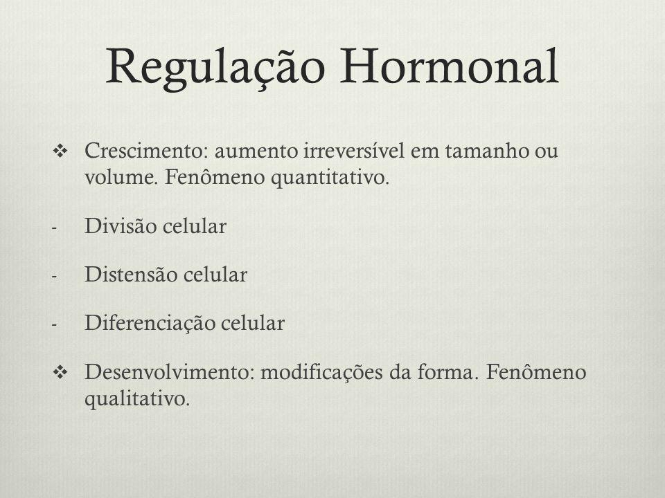 Regulação Hormonal Crescimento: aumento irreversível em tamanho ou volume. Fenômeno quantitativo. - Divisão celular - Distensão celular - Diferenciaçã