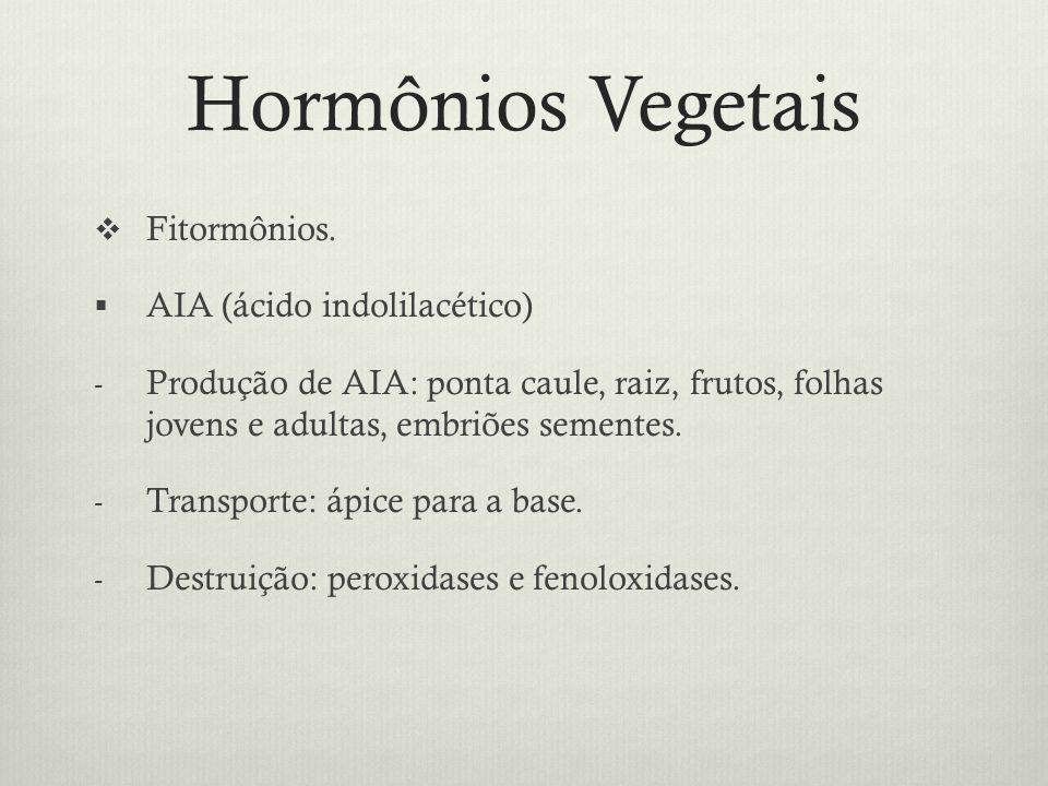 Hormônios Vegetais Fitormônios. AIA (ácido indolilacético) - Produção de AIA: ponta caule, raiz, frutos, folhas jovens e adultas, embriões sementes. -