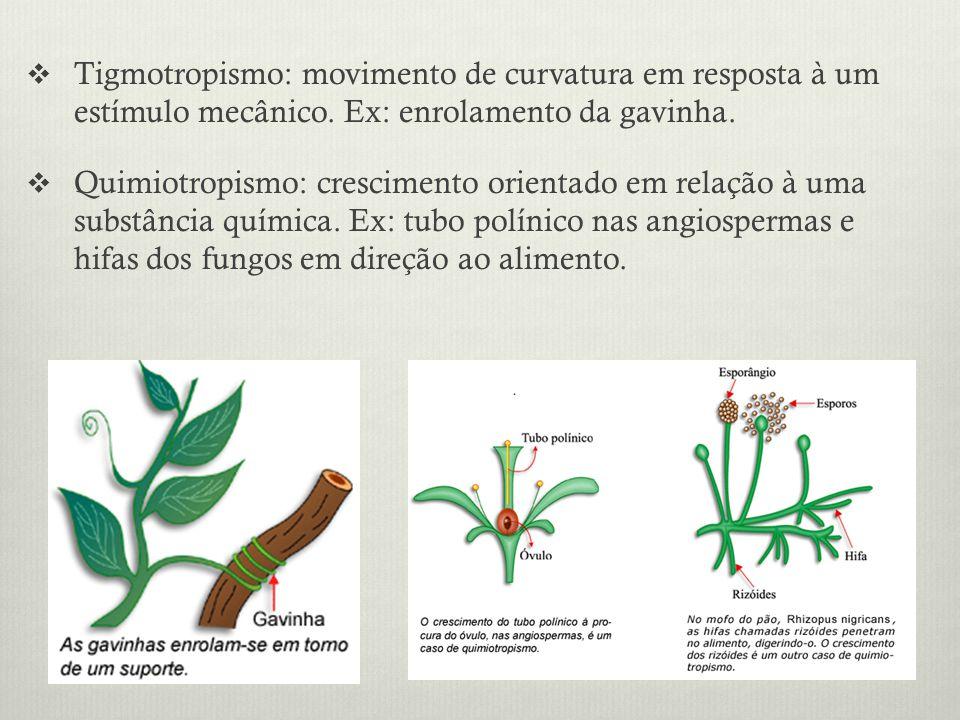 Tigmotropismo: movimento de curvatura em resposta à um estímulo mecânico. Ex: enrolamento da gavinha. Quimiotropismo: crescimento orientado em relação