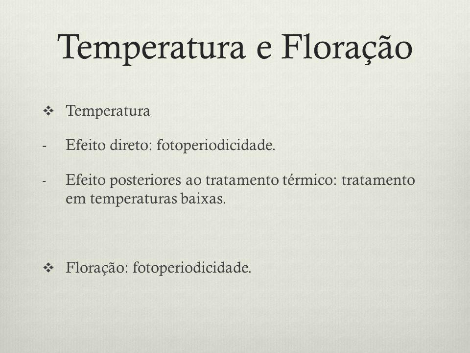Temperatura e Floração Temperatura -Efeito direto: fotoperiodicidade. - Efeito posteriores ao tratamento térmico: tratamento em temperaturas baixas. F