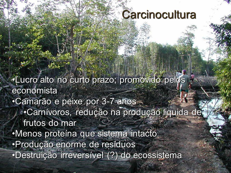 Carcinocultura Lucro alto no curto prazo; promovido pelos economistaLucro alto no curto prazo; promovido pelos economista Camarão e peixe por 3-7 anos