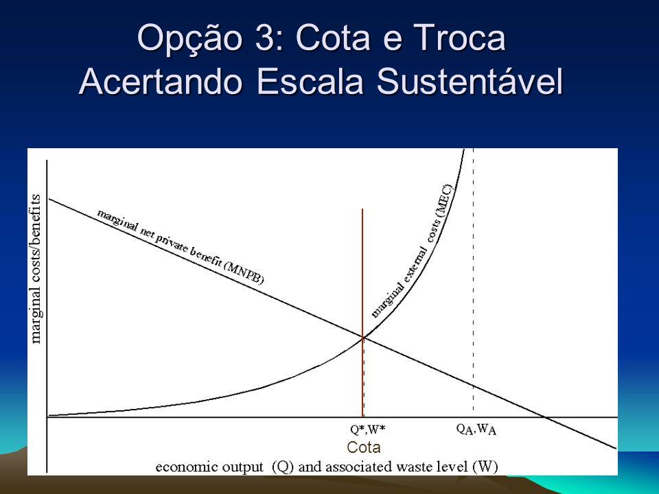 Opção 3: Cota e Troca Acertando Escala Sustentável Cota