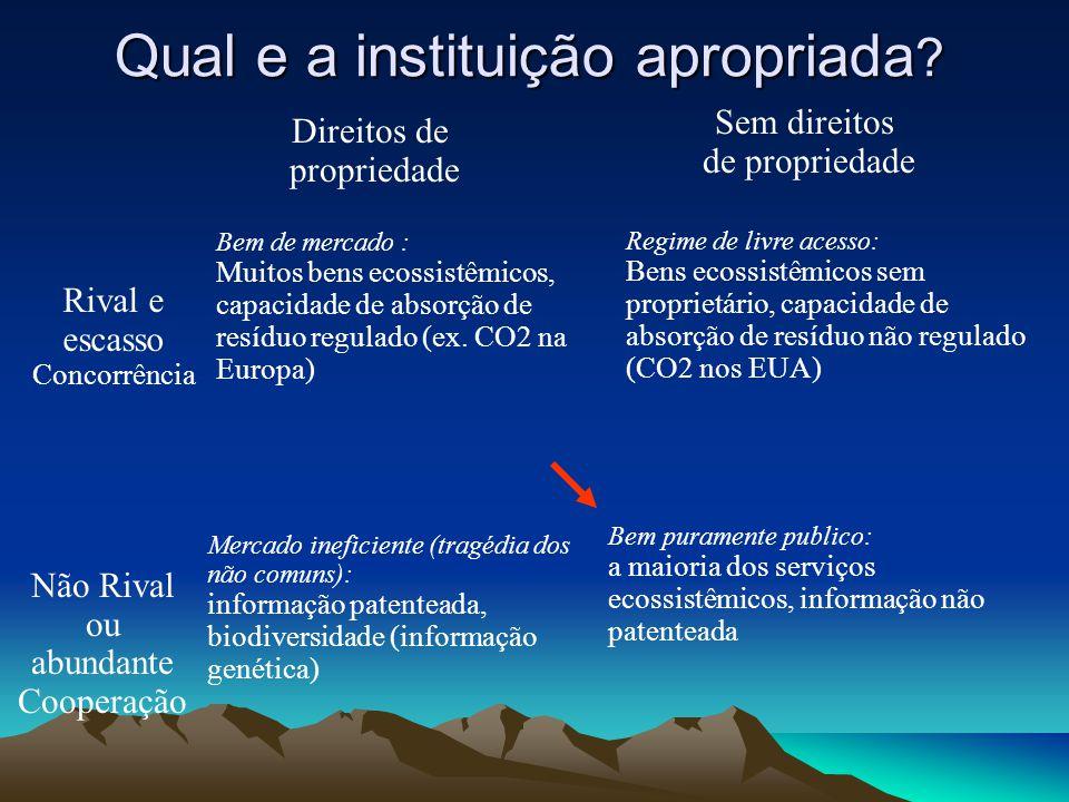 Qual e a instituição apropriada ? Rival e escasso Concorrência Não Rival ou abundante Cooperação Direitos de propriedade Sem direitos de propriedade B