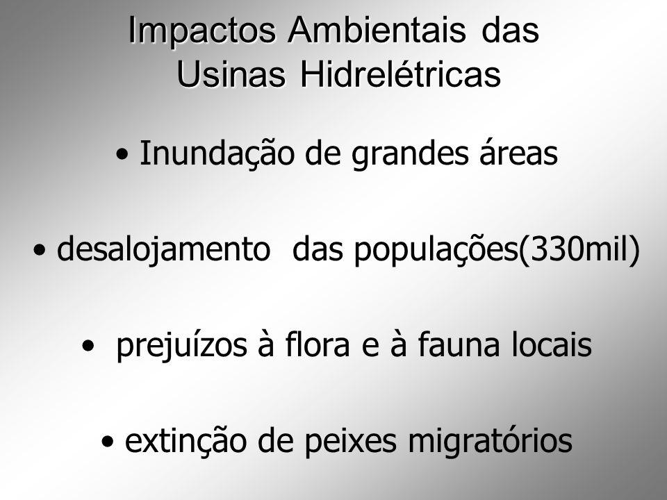 Impactos Ambientais das Usinas Hidrelétricas Inundação de grandes áreas desalojamento das populações(330mil) prejuízos à flora e à fauna locais extinção de peixes migratórios
