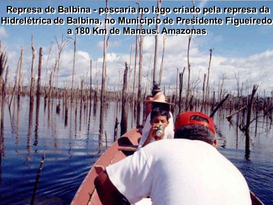 Represa de Balbina - pescaria no lago criado pela represa da Hidrelétrica de Balbina, no Município de Presidente Figueiredo, a 180 Km de Manaus.